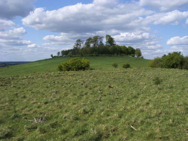 wittenham clumps near didcot