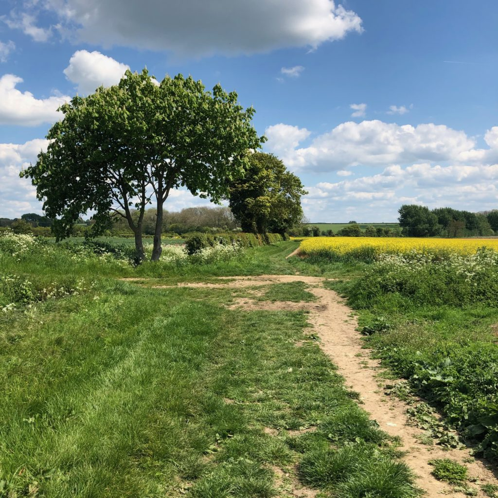 This Long Crendon to Chearsley Walking route offers some truly stunning views.