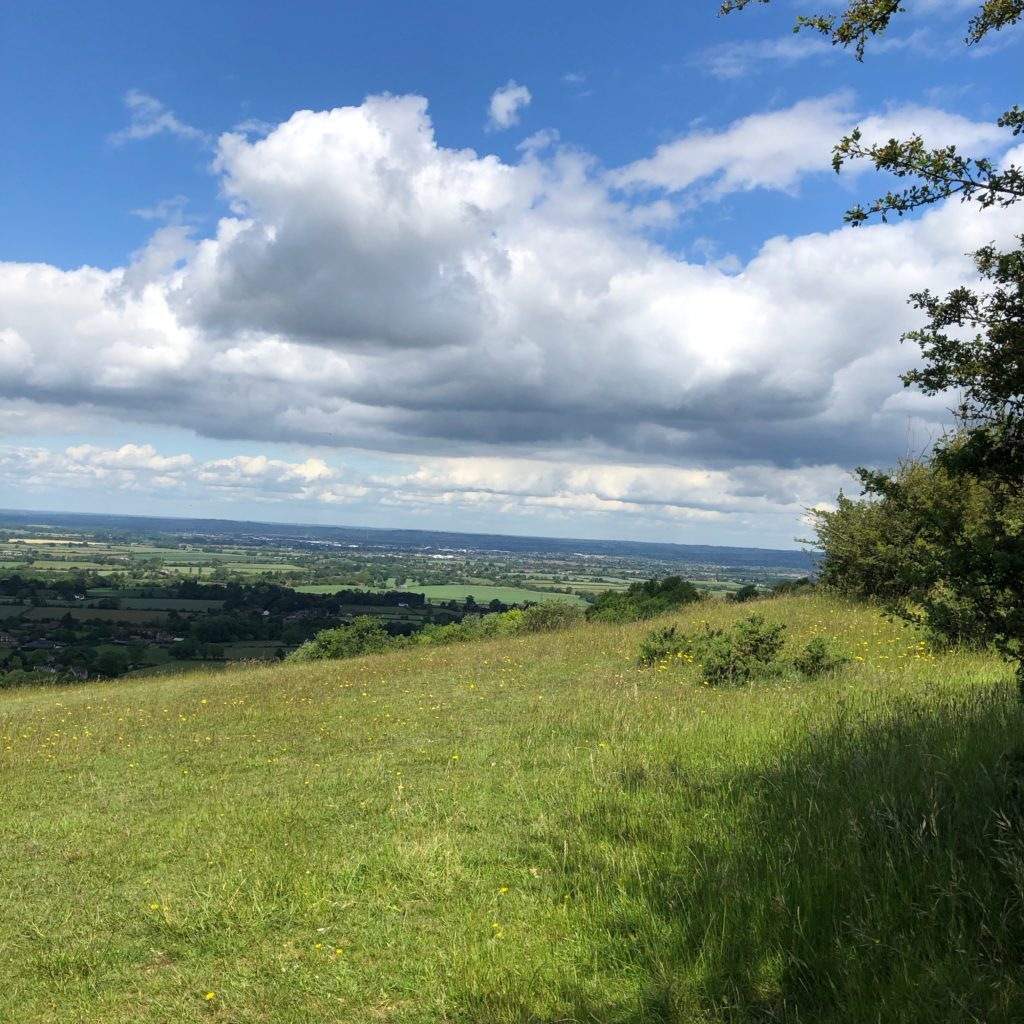 Views near Coombe Hill.