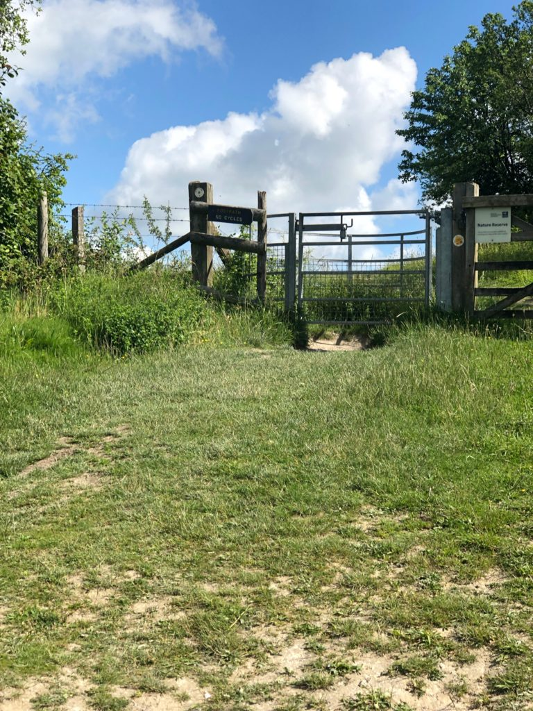 Turn right and go through the stile
