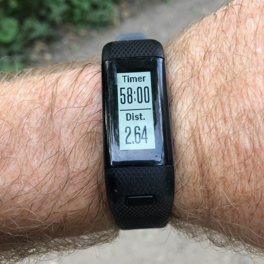 For me, the Vivosmart HR+ is not only the best hiking watch but also the best all rounder thanks to its simplicity.